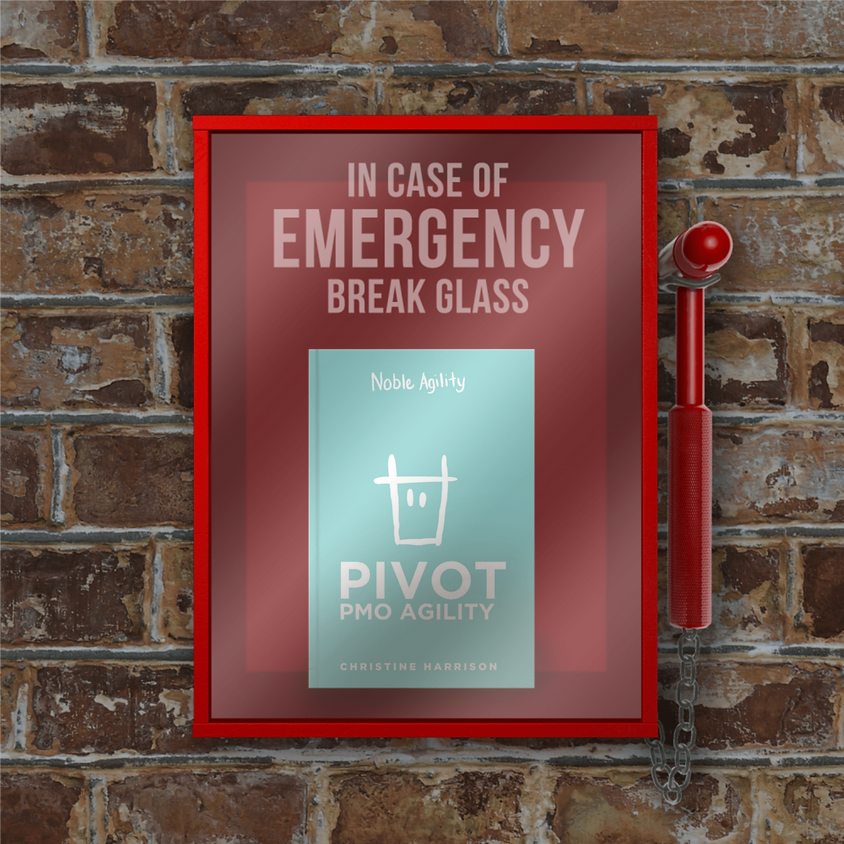 BOOK LAUNCH for PIVOT coming soon to a state near you