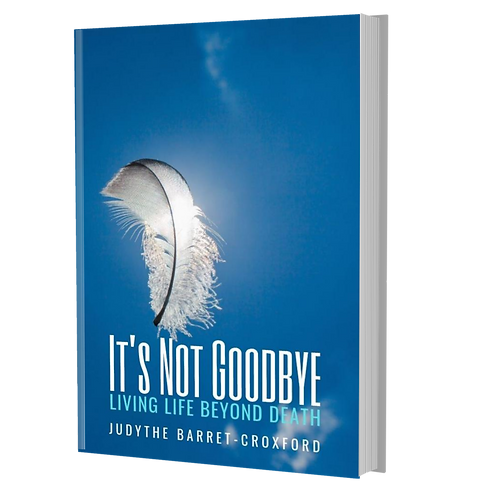 BOOK:  IT'S NOT GOODBYE