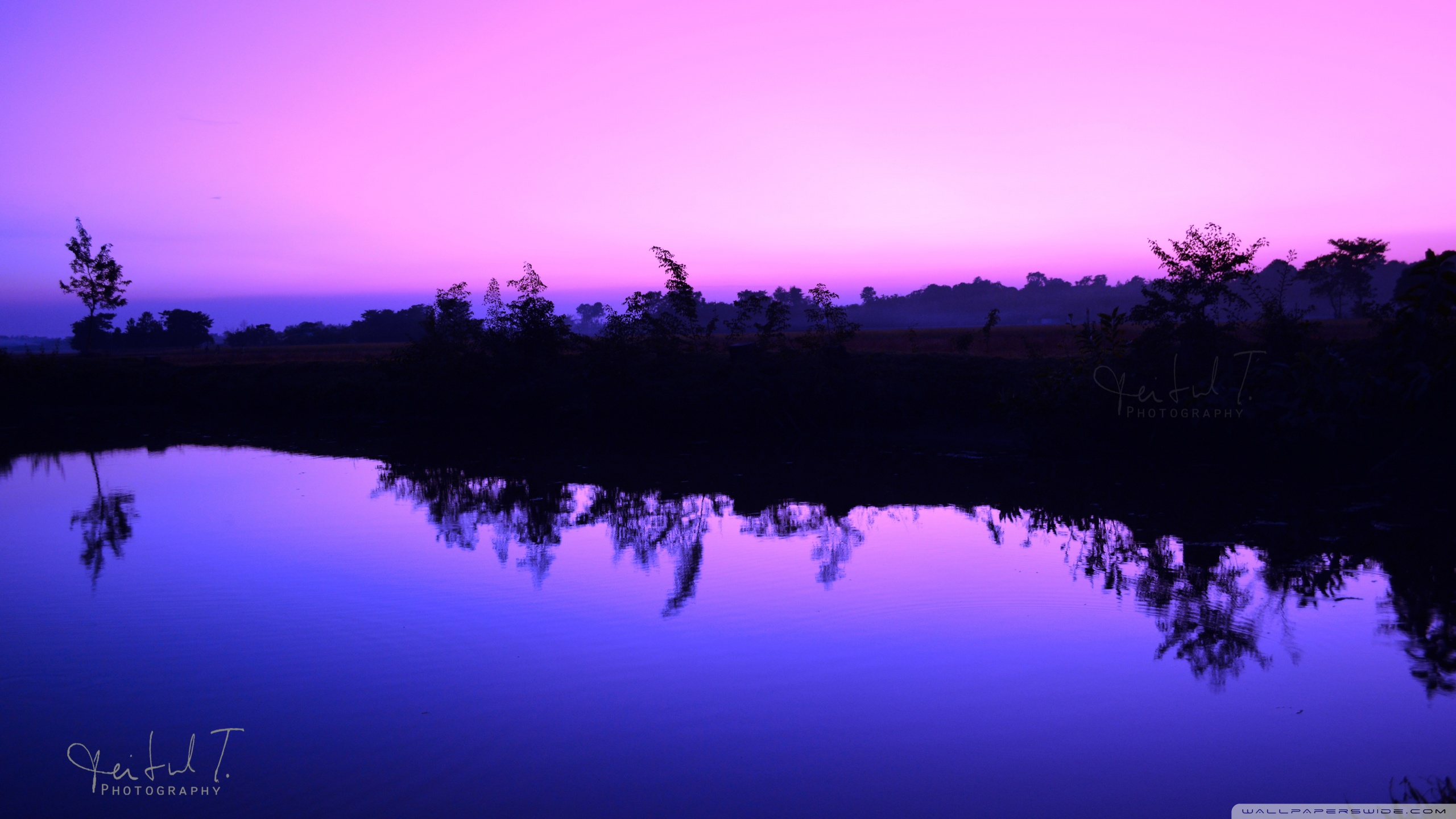 purple_sky_7-wallpaper-2560x1440