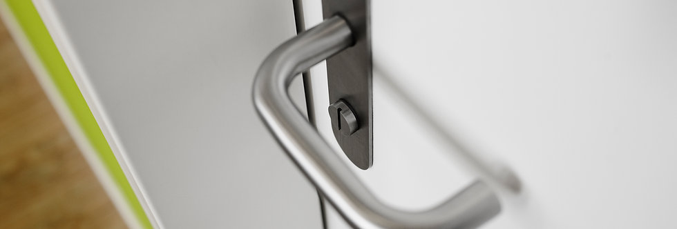 BASIC - UNSPRUNG LEVER HANDLE