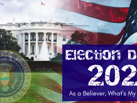 Election Day 2020 - What Can I Do?