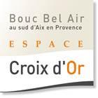 Croix d or.jpg