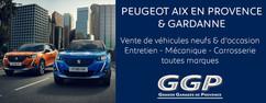 Encart Pub Peugeot.jpg