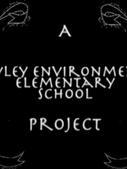 Eco-Arts