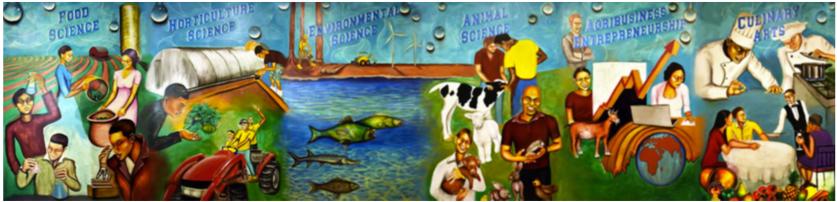 Harold S. Vincent School