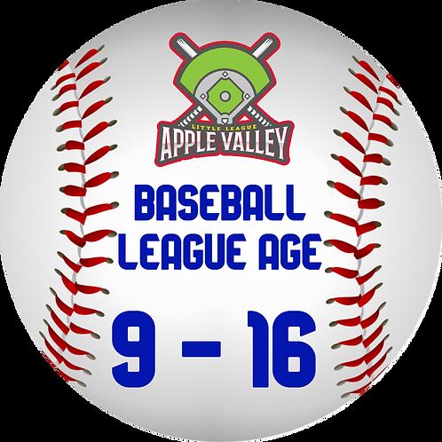 Spring 2021 Baseball 9-16