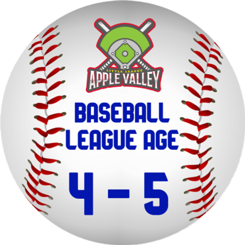Fall 2020 Baseball 4-5