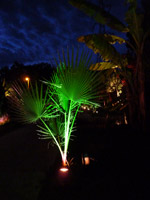 Eclairage jardins