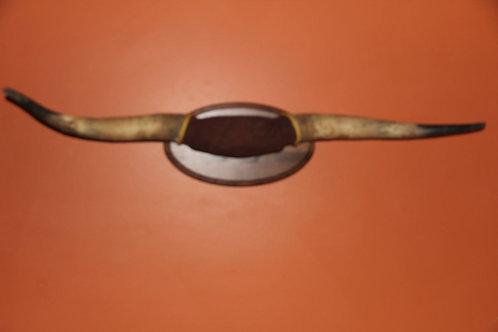 Texas Longhorn Mount: Straight-as-an-Arrow (Horns Only)