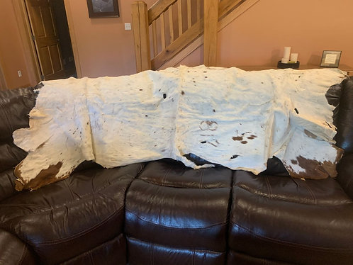 #2019-08 Soft White Roan/Speckled Texas Longhorn Hide