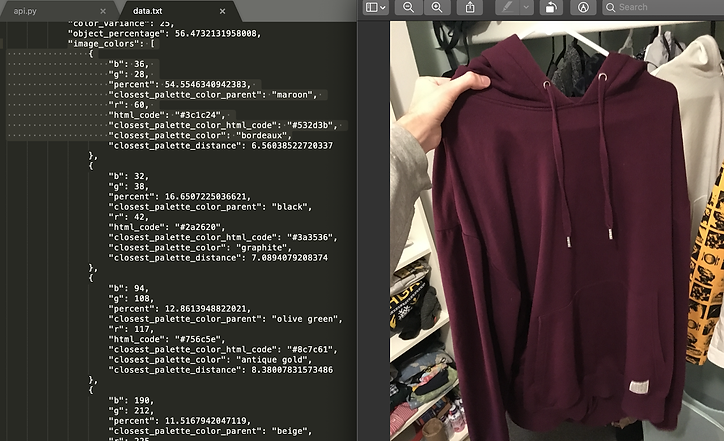 photo of a hoodie, after being sent through color identifier with the programming code used
