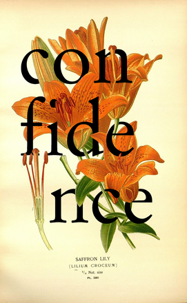 Confidence Lily Botanical Collage