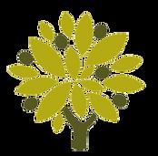 alivu-albero-01.png