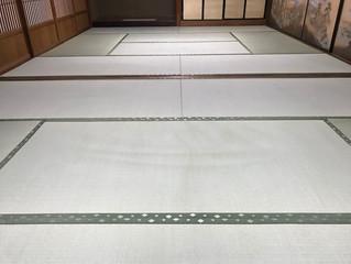 新畳 / 熊本県産極み表