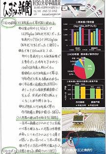 平住産業,畳表,熊本県八代郡,ひらずみ新聞,2018年9月号