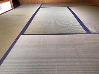 新畳 / 熊本産畳表「涼風」綿々畳表