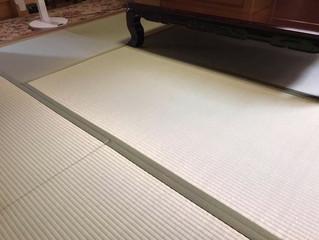 表替え / 熊本県産畳表「涼風」