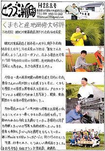 平住産業,畳表,熊本県八代郡,ひらずみ新聞,8月号