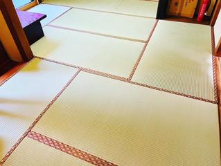 表替え / 熊本産畳表「夕凪」(経糸:麻綿)