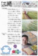 平住産業,畳表,熊本県八代郡,ひらずみ新聞,2017年7月号