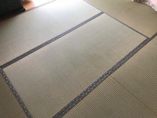 新畳 熊本県産畳表
