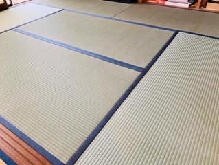 表替え / 熊本産畳表「夕凪」男前表(経糸:麻綿、本間一番草)