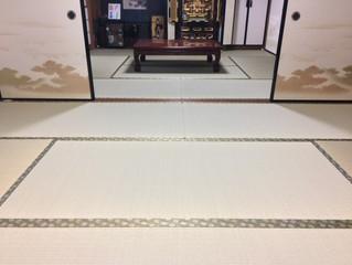新畳 / 熊本男前表