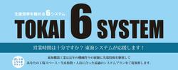 TOKAI 6 SYSTEM