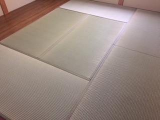 新畳 熊本県産畳表 / 大和撫子表