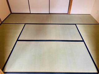 新畳 / 熊本産畳表「ひのみどり」(経糸:綿糸)