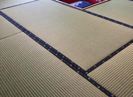 表替え / 縁付畳 熊本産畳表 涼風一番草
