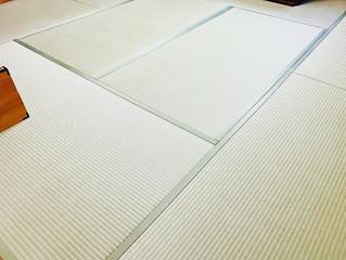 新畳 / 熊本産畳表「夕凪」男前表(経糸:麻綿、本間一番草)
