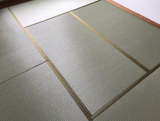 新畳 / 樹脂表
