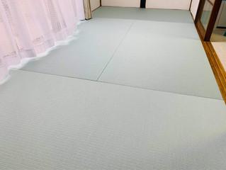 新畳 / ダイケン清流カラー(青磁色)・表替え / 熊本産畳表「ひのはるか」(経糸:綿々)