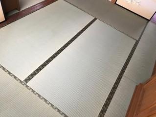 表替え 熊本県産畳表