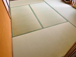表替え / 熊本産畳表「ひのはるか」(経糸:綿々)