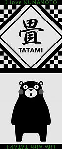 towel-1_GY 2.jpg