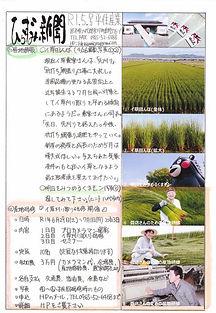 平住産業,畳表,熊本県八代郡,ひらずみ新聞,2019年5月号
