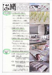 平住産業,畳表,熊本県八代郡,ひらずみ新聞,2019年10月号