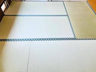 新畳 / 熊本産畳表「涼風」(経糸:綿々、本間一番草)