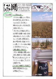 ひらずみ新聞2月号