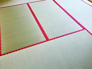 新畳 / 熊本産畳表「夕凪」(経糸:綿糸)