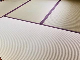 新畳 / 熊本産畳表「ひのはるか」( 経糸:麻綿、一番草)