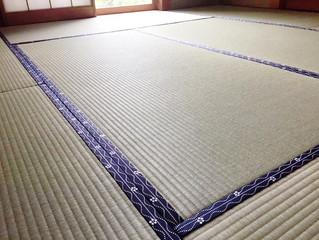 熊本産ブランド畳表 / ひのさくら
