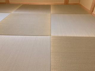 新畳 / 縁なし半帖目積表