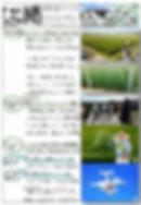 平住産業,畳表,熊本県八代郡,ひらずみ新聞,2017年6月号