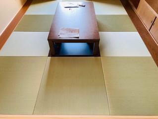 新畳 / 縁無し半畳 熊本産目積畳表(経糸:綿々)
