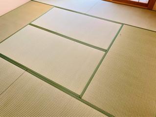 表替え / 熊本産畳表「涼風」(経糸:麻綿、一番草)