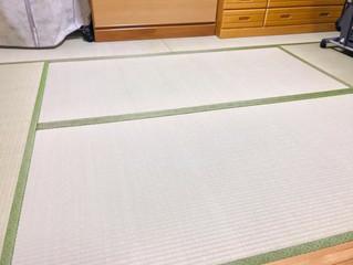 新畳 / 熊本産畳表「涼風」(経糸  綿々)