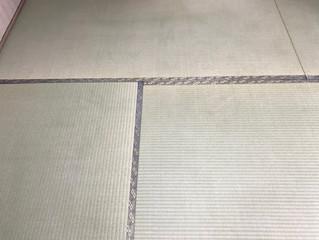 新畳 / 熊本県産畳表 大和撫子表